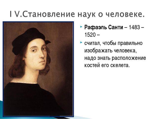 Рафаэль Санти – 1483 – 1520 – считал, чтобы правильно изображать человека, на...