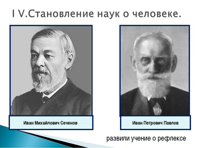 развили учение о рефлексе Иван Михайлович Сеченов Иван Петрович Павлов