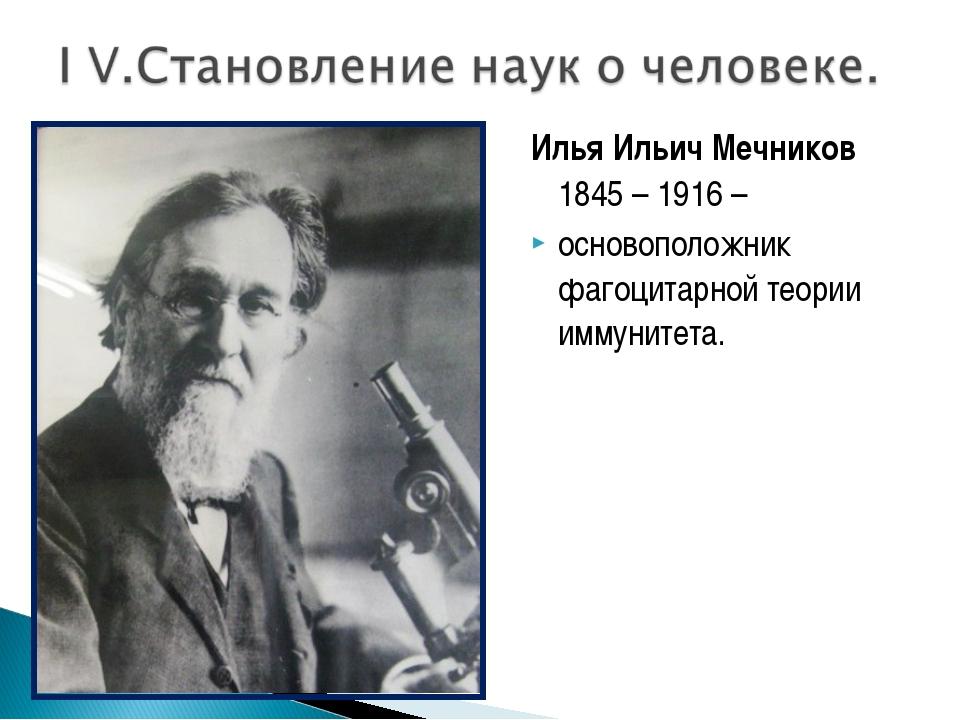 Илья Ильич Мечников 1845 – 1916 – основоположник фагоцитарной теории иммуните...