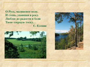 Мещера. Река Пра. О Русь, малиновое поле. И степь, упавшая в реку. Люблю до р