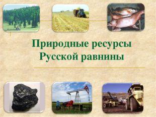Природные ресурсы Русской равнины