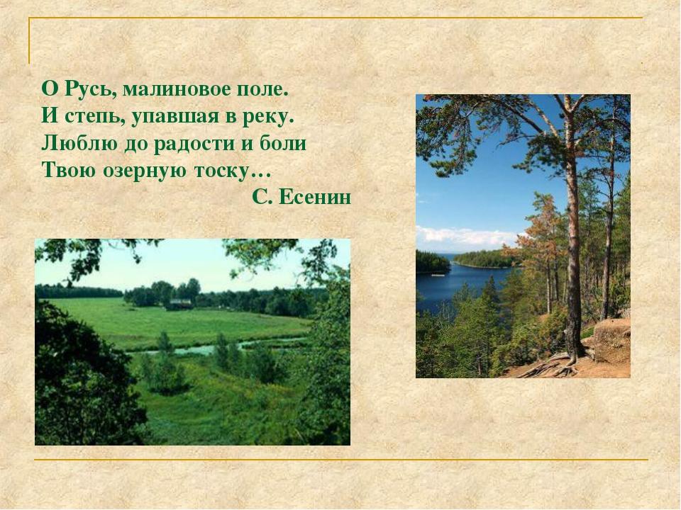 Мещера. Река Пра. О Русь, малиновое поле. И степь, упавшая в реку. Люблю до р...