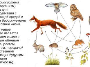 Любая биосистема (живой организм) открыта для взаимодействия с окружающей сре