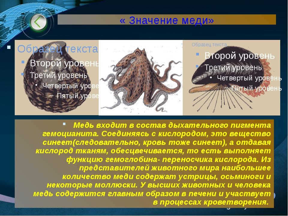 www.themegallery.com « Значение меди» Медь входит в состав дыхательного пигме...