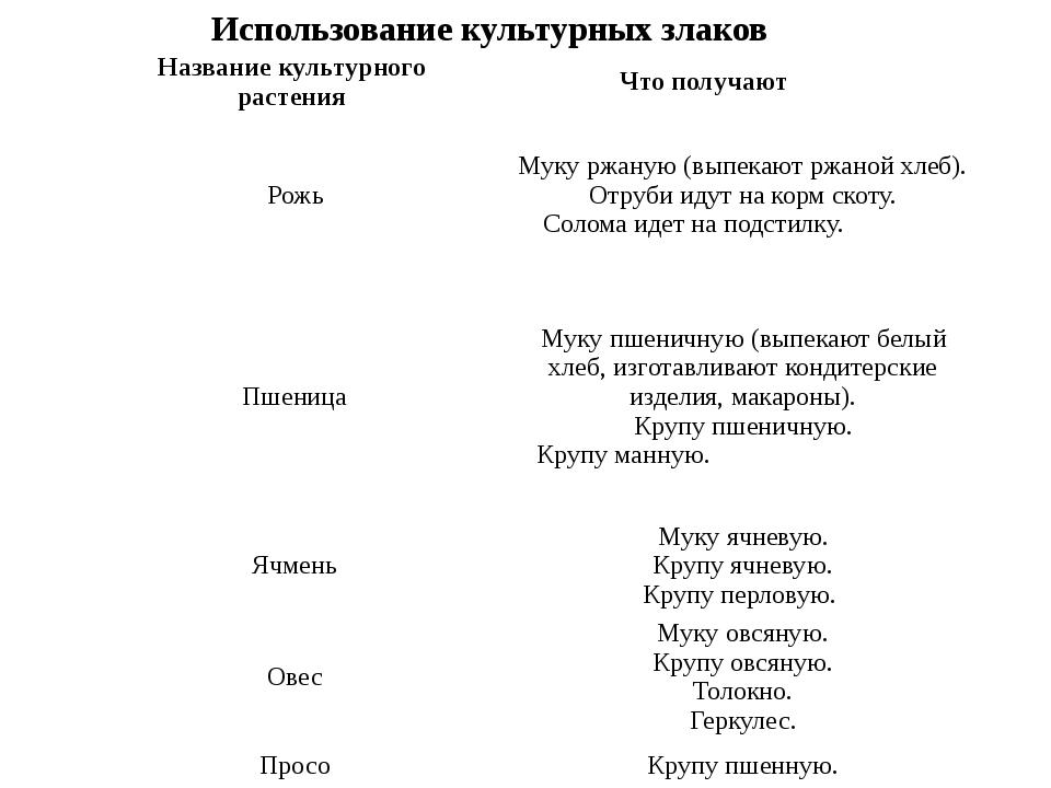 Использование культурных злаков Название культурного растения Что получают...