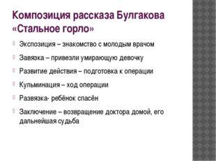 Композиция рассказа Булгакова «Стальное горло» Экспозиция – знакомство с моло