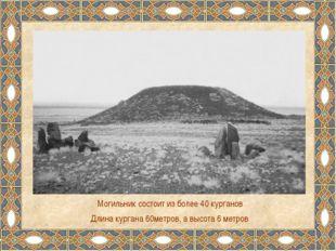 Могильник состоит из более 40 курганов Длина кургана 60метров, а высота 6 мет