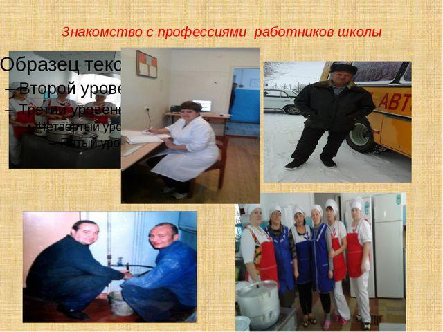 Знакомство с профессиями работников школы