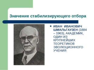 Значение стабилизирующего отбора ИВАН ИВАНОВИЧ ШМАЛЬГАУЗЕН (1884 – 1963), АКА