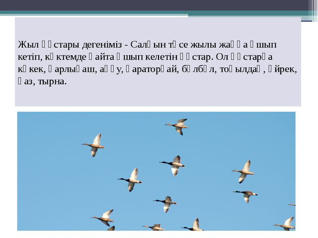 Жыл құстары дегеніміз - Салқын түсе жылы жаққа ұшып кетіп, көктемде қайта ұшы...