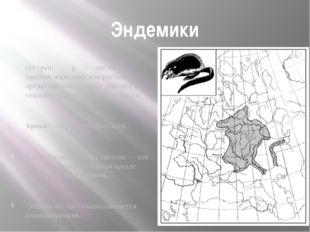 Эндемики (от греч. ἔνδημος — местный) таксоны животных или растений, представ