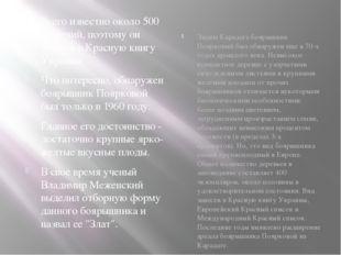 Всего известно около 500 растений, поэтому он занесен в Красную книгу Украины