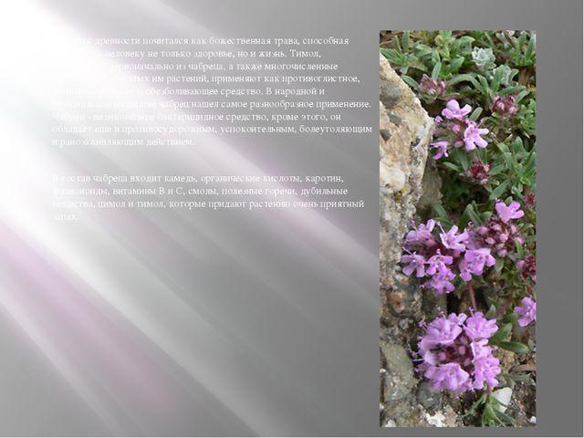 Чабрец с древности почитался как божественная трава, способная возвращать чел...