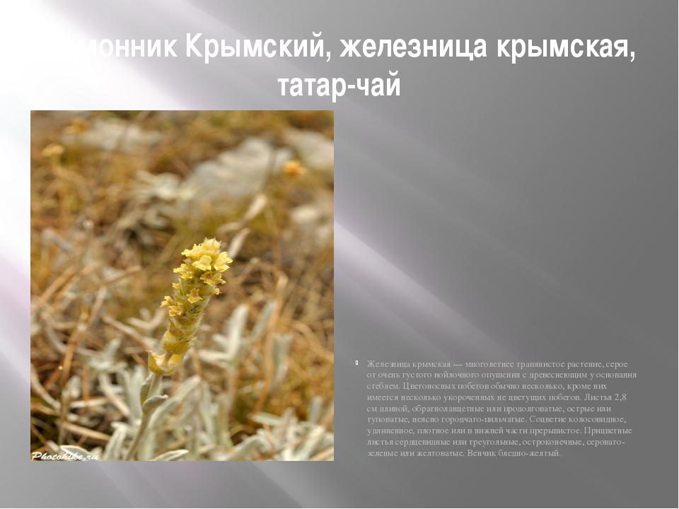 Лимонник Крымский, железница крымская, татар-чай Железница крымская — многоле...