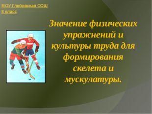 Значение физических упражнений и культуры труда для формирования скелета и му