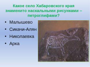 Какое село Хабаровского края знаменито наскальными рисунками – петроглифами?