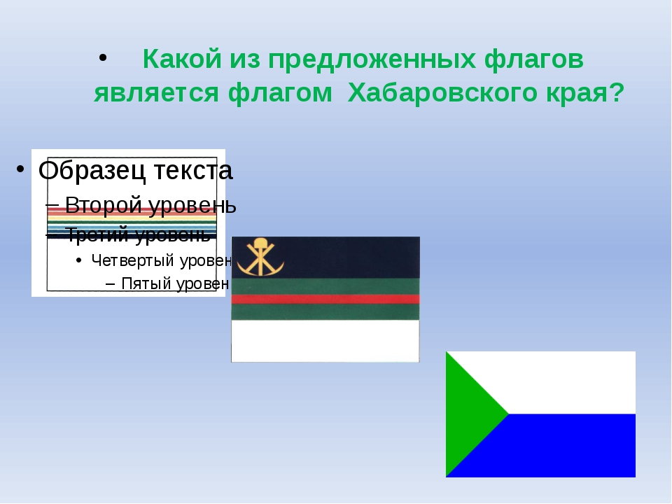 Какой из предложенных флагов является флагом Хабаровского края?