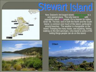 New Zealand's 3rd largest island, Stewart Island is a very special place. Th
