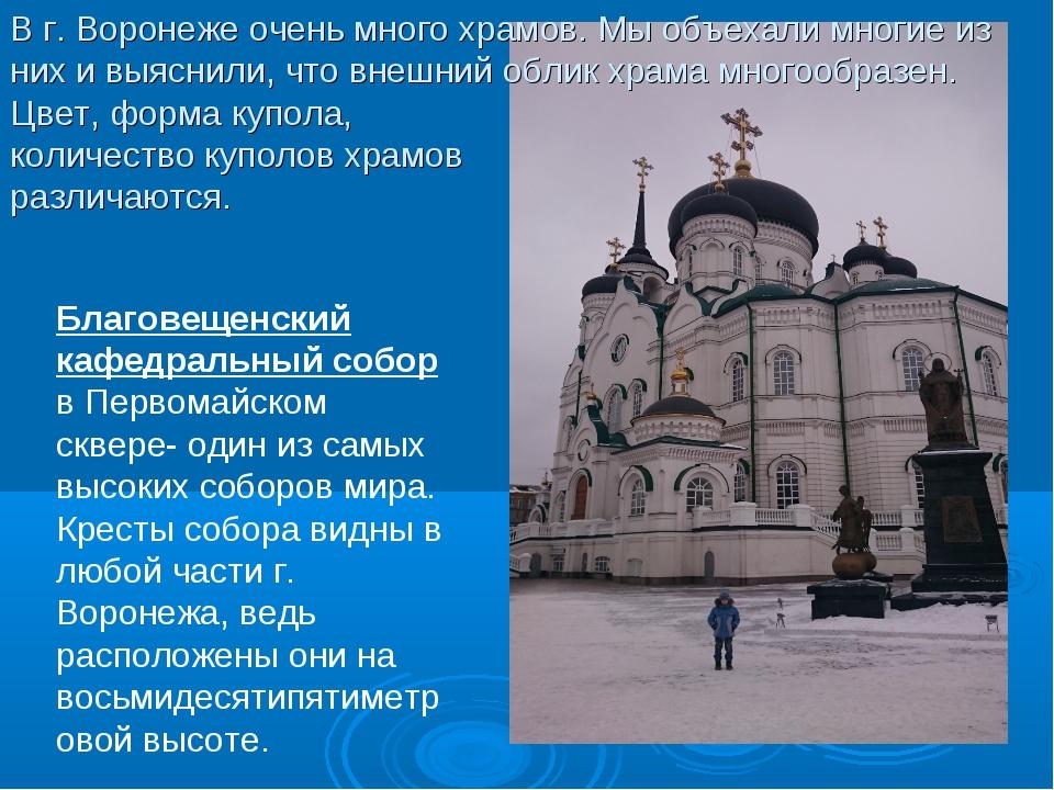 Благовещенский кафедральный собор в Первомайском сквере- один из самых высок...
