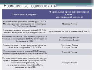 Нормативные правовые акты : Нормативный документ Федеральный орган исполнител