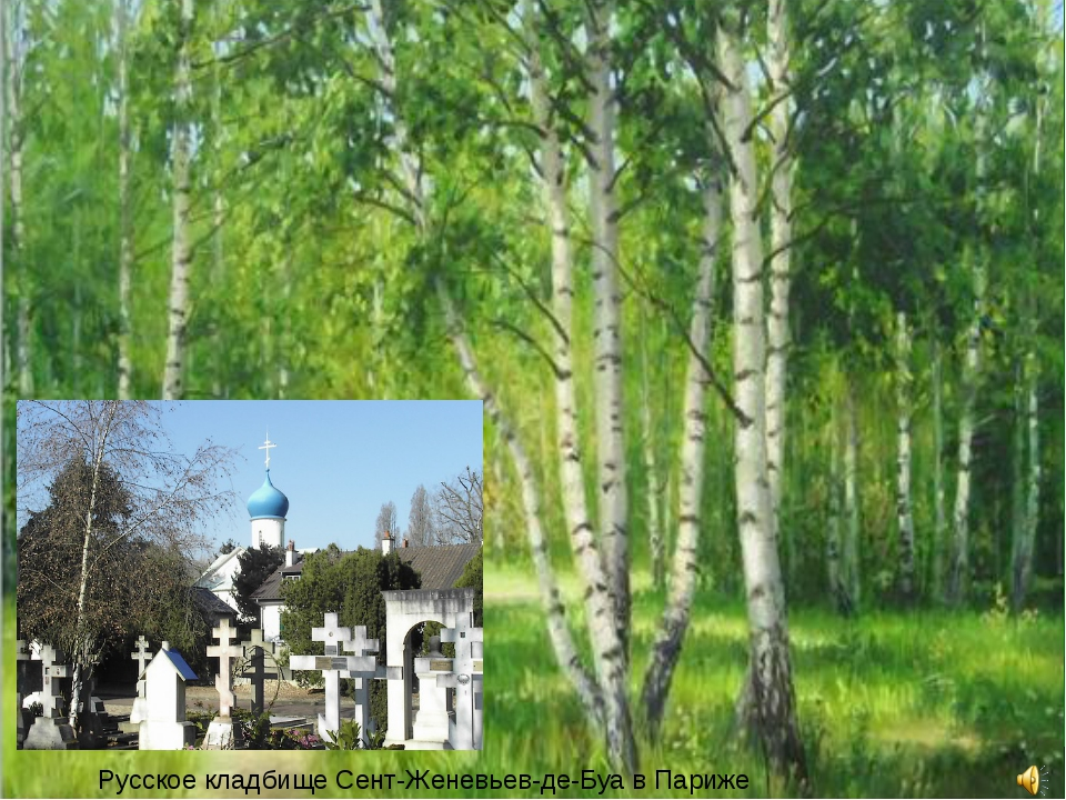Русское кладбище Сент-Женевьев-де-Буа в Париже