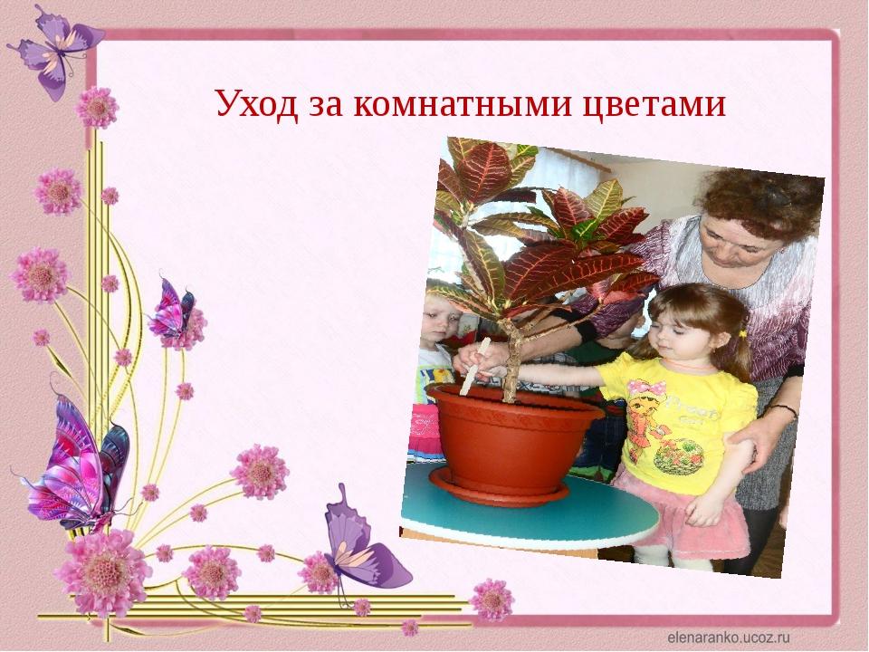 Уход за комнатными цветами