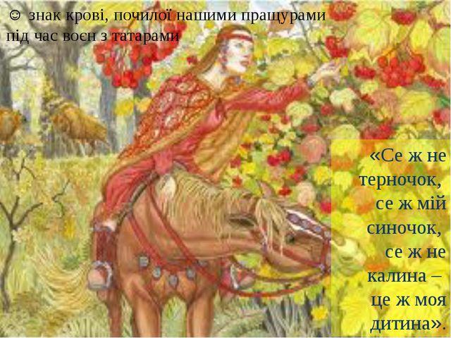 ☺ знак крові, почилої нашими пращурами під час воєн з татарами «Се ж не терно...
