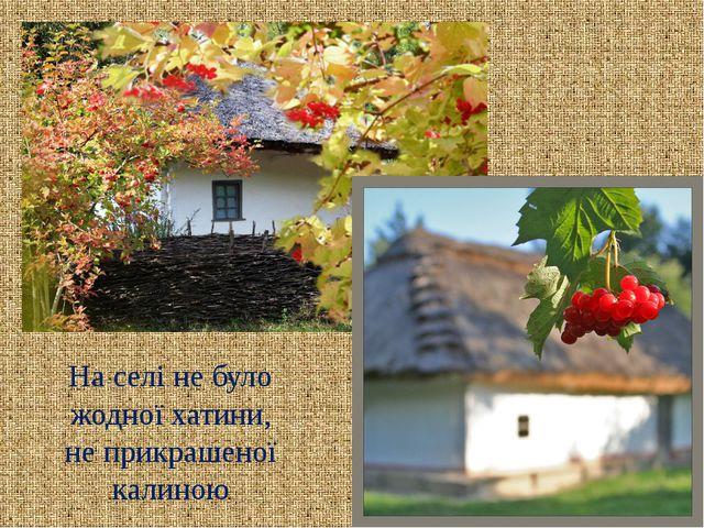 На селі не було жодної хатини, не прикрашеної калиною