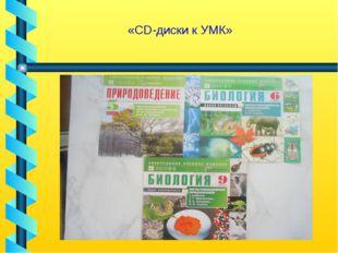 «CD-диски к УМК»