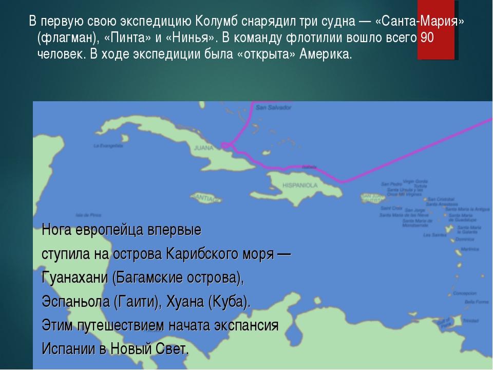 В первую свою экспедицию Колумб снарядил три судна — «Санта-Мария» (флагман)...