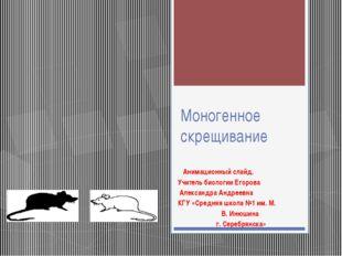Моногенное скрещивание Анимационный слайд. Учитель биологии Егорова Александр