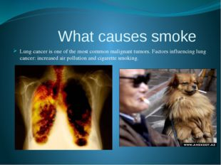 What causes smoke Lung cancer is one of the most common malignant tumors. Fa
