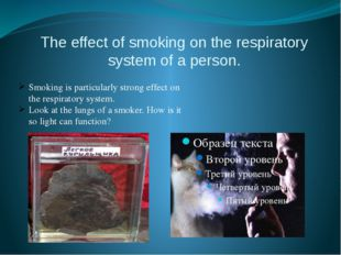 The effect of smoking on the respiratory system of a person. Smoking is parti