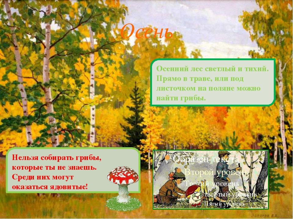 Осень Осенний лес светлый и тихий. Прямо в траве, или под листочком на полян...