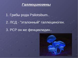 "Галлюциногены 1.Грибы рода Psilotsibum.. 2. ЛСД - ""эталонный"" галлюциноген."