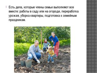 Есть дела, которые члены семьи выполняют все вместе: работы в саду или на ого