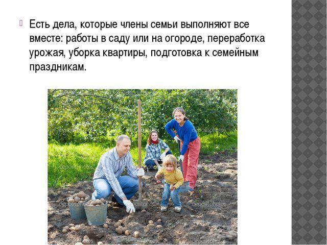 Есть дела, которые члены семьи выполняют все вместе: работы в саду или на ого...