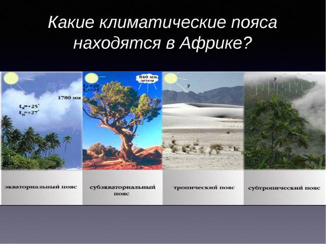 Какие климатические пояса находятся в Африке?