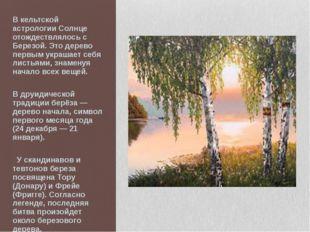 В кельтской астрологии Солнце отождествлялось с Березой. Это дерево первым ук