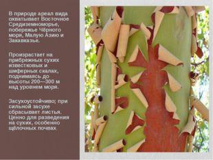 В природе ареал вида охватывает Восточное Средиземноморье, побережье Чёрного