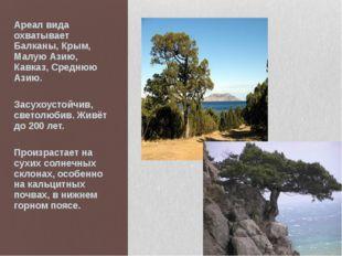 Ареал вида охватывает Балканы, Крым, Малую Азию, Кавказ, Среднюю Азию. Засухо