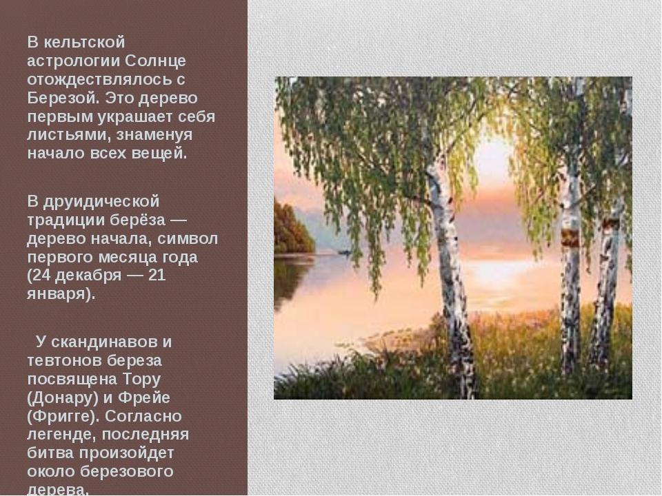 В кельтской астрологии Солнце отождествлялось с Березой. Это дерево первым ук...