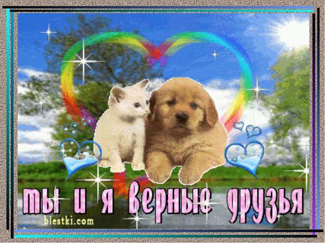 Фото открыток дружбы