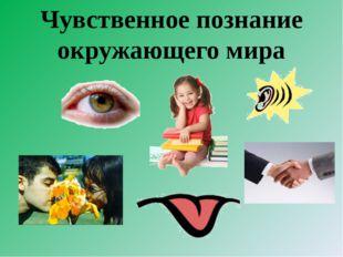 Чувственное познание окружающего мира