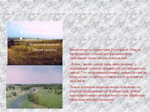 Туристическая привлекательность района. Большая часть территории Ростовской о