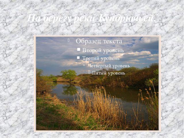 На берегу реки Кундрючьей.