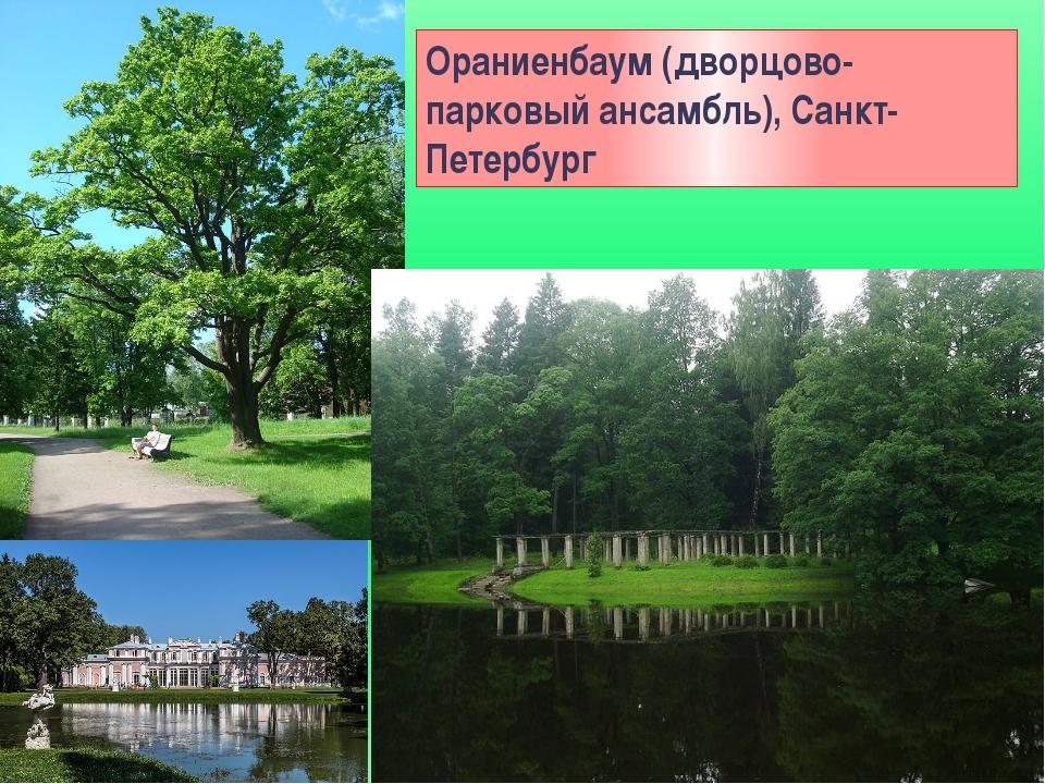 Ораниенбаум (дворцово-парковый ансамбль), Санкт-Петербург