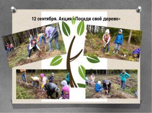 12 сентября. Акция «Посади своё дерево»