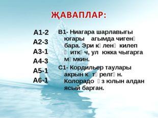 А1-2 А2-3 А3-1 А4-3 А5-1 А6-1 В1- Ниагара шарлавыгы югары агымда чигенә бара