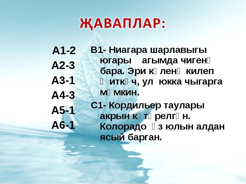 А1-2 А2-3 А3-1 А4-3 А5-1 А6-1 В1- Ниагара шарлавыгы югары агымда чигенә бара...